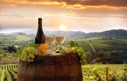 foto barrique con bicchier e uva Toscana