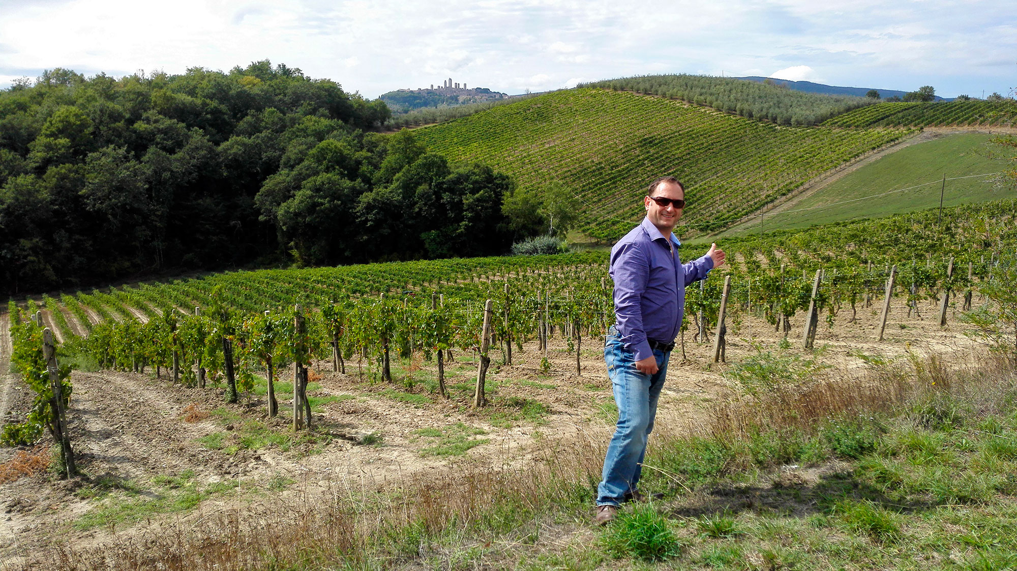 San Gimignano vineyard