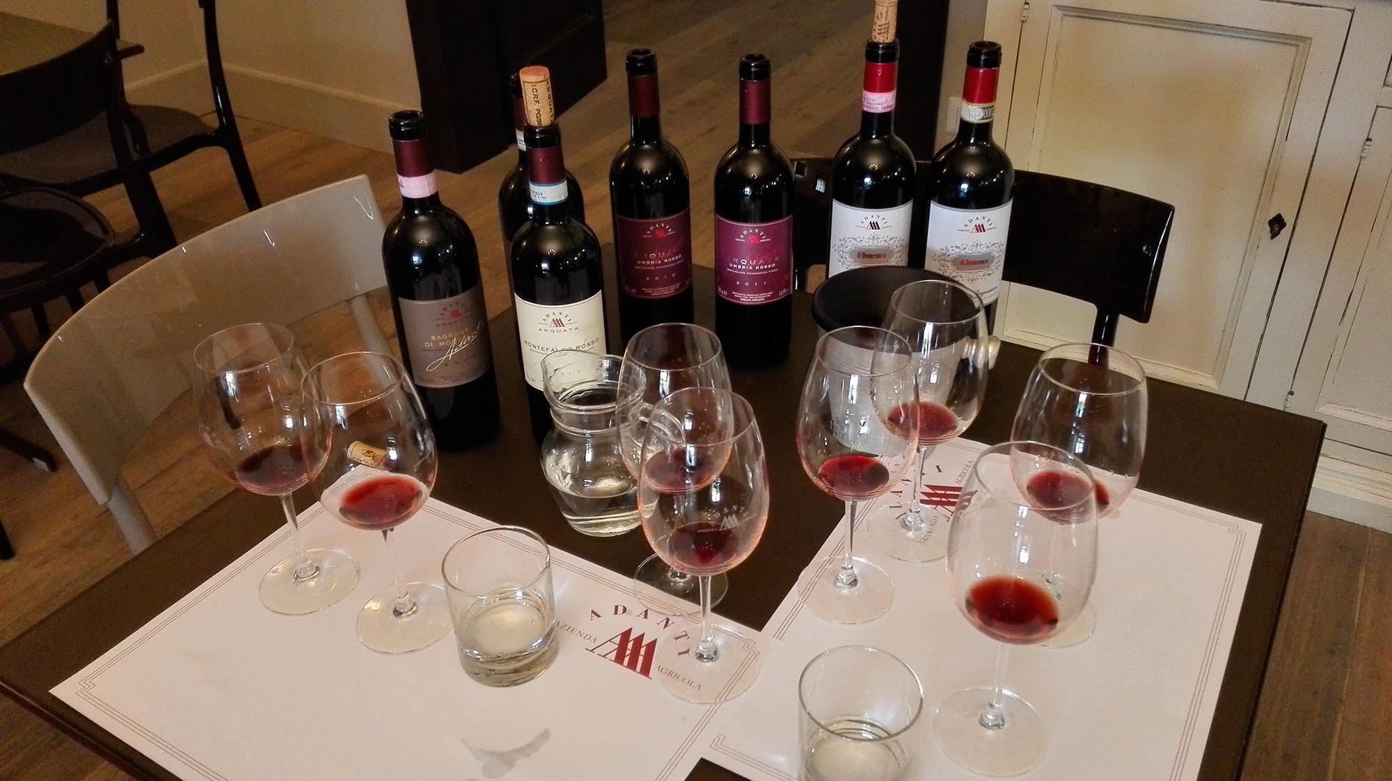Montefalco wine tasting