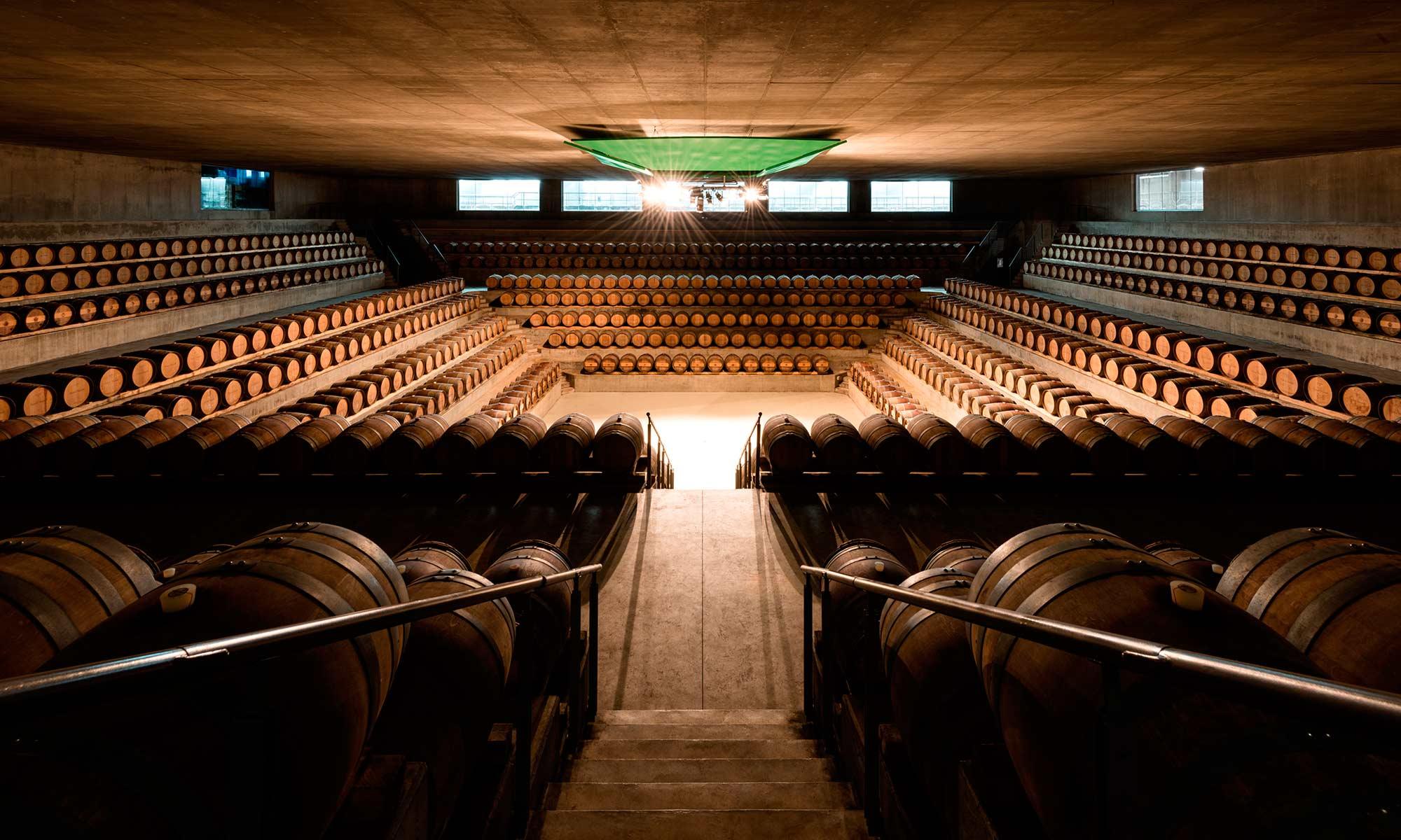 Maremma wine cellar