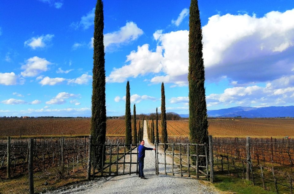 PRIVATE TUSCANY WINE TOURS & TASTINGS