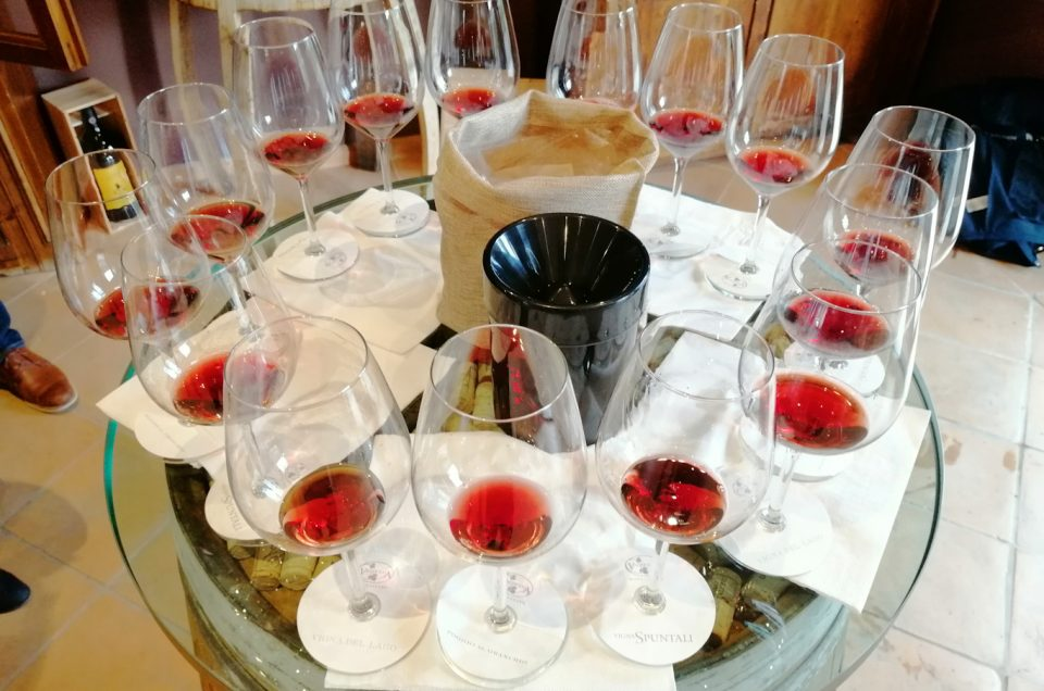 Brunello di Montalcino wine tasting experiences with Sommelier